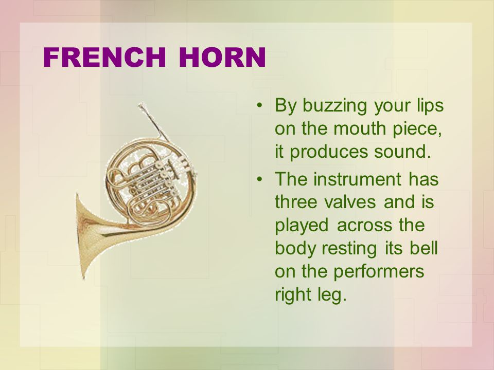 FRENCH HORN By buzzing your lips on the mouth piece, it produces sound.