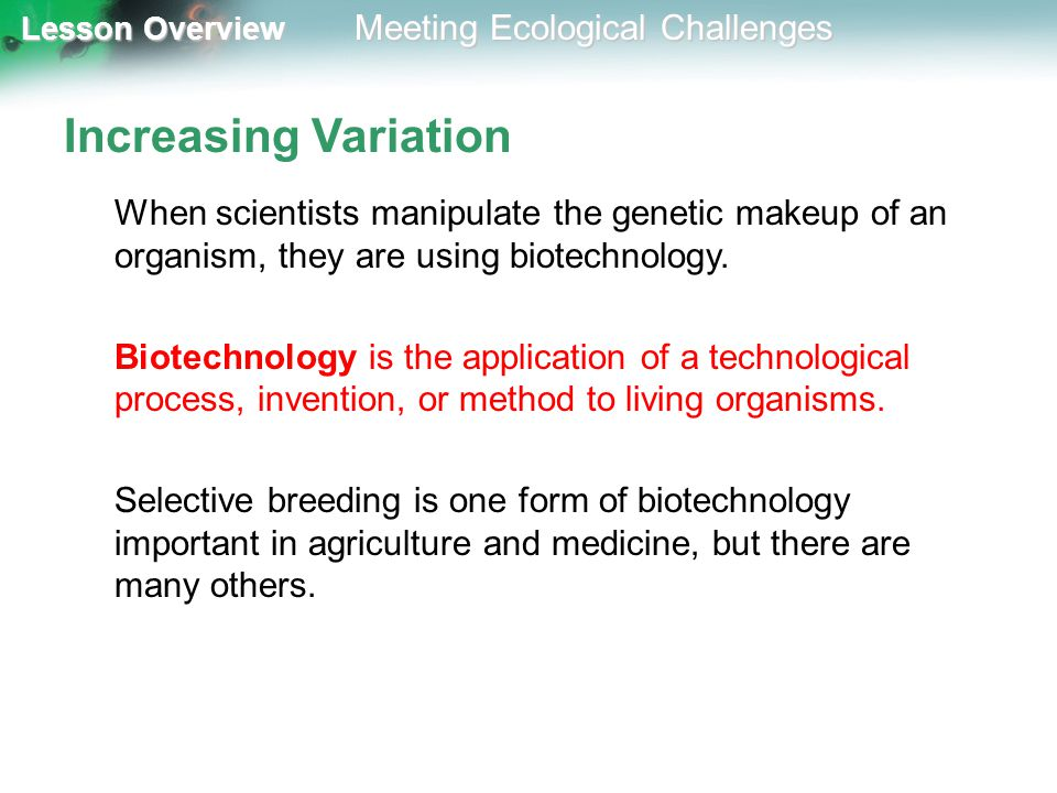 Increasing Variation When scientists manipulate the genetic makeup of an organism, they are using biotechnology.