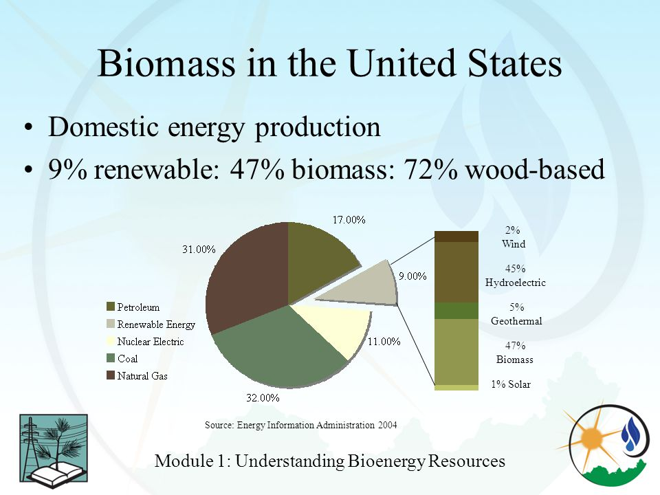 Biomass in the United States