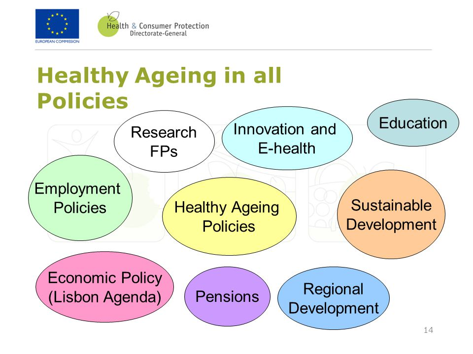 Healthy Ageing in all Policies