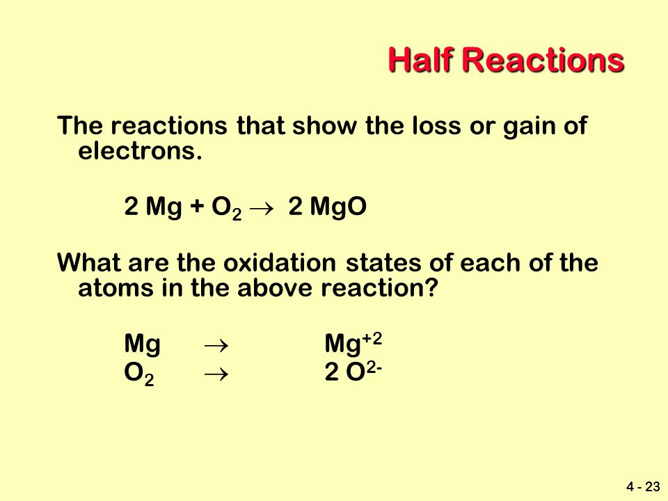 Half Reactions The reactions that show the loss or gain of electrons.