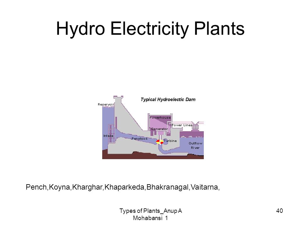 Hydro Electricity Plants