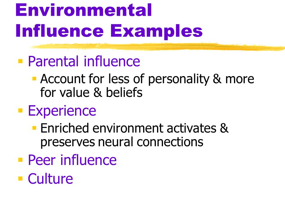 Environmental Influence Examples