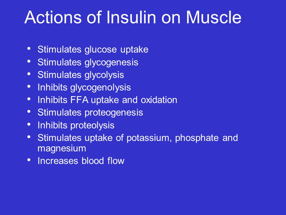 Actions of Insulin on Muscle