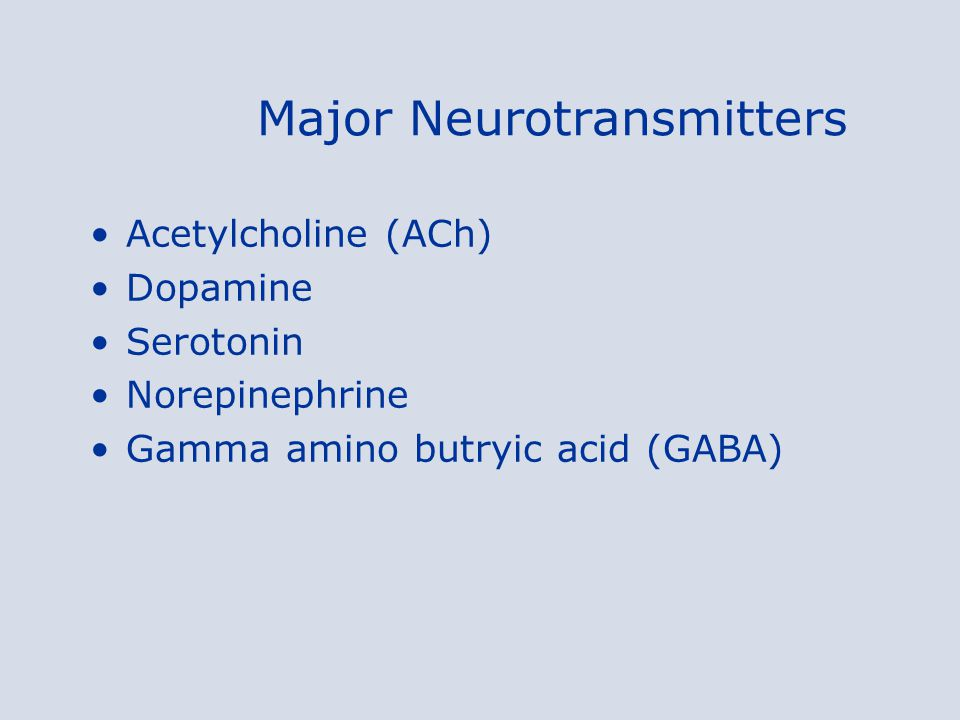Major Neurotransmitters