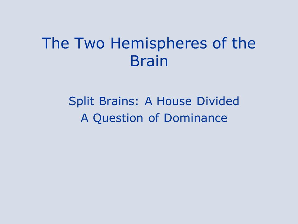 The Two Hemispheres of the Brain