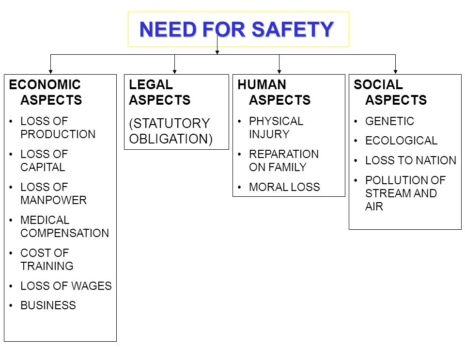 NEED FOR SAFETY ECONOMIC ASPECTS LEGAL ASPECTS (STATUTORY OBLIGATION)