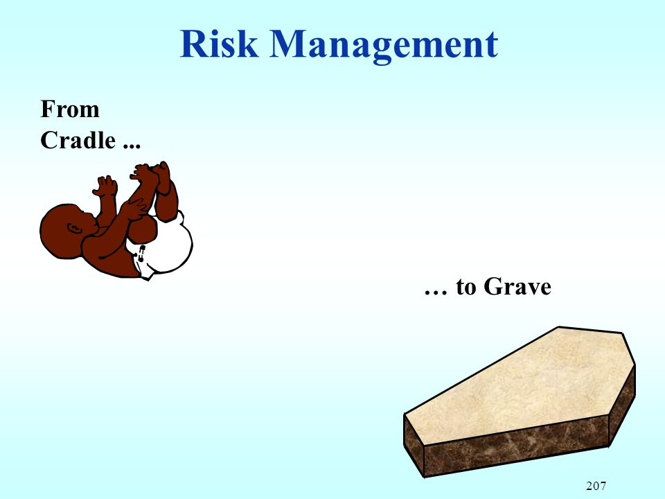 Risk Management From Cradle ... … to Grave 207