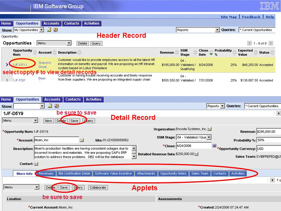 select oppty # to view detail records