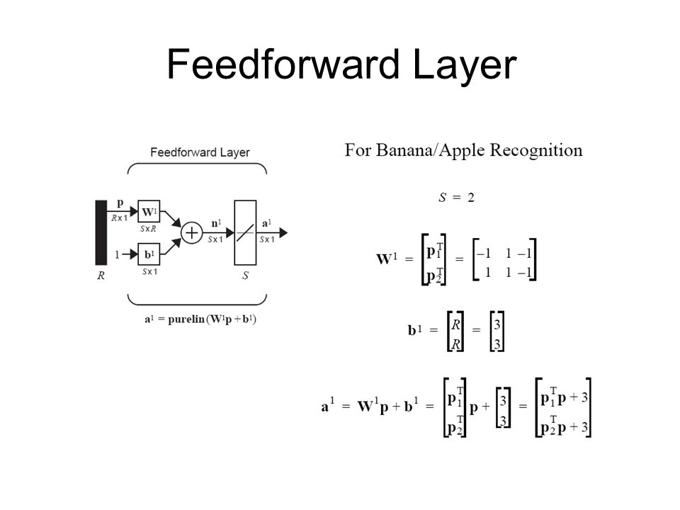 Feedforward Layer
