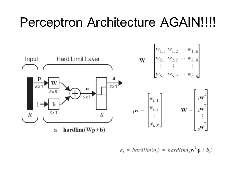 Perceptron Architecture AGAIN!!!!