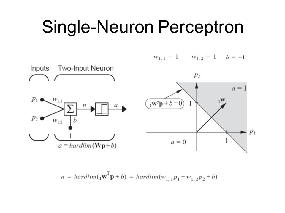 Single-Neuron Perceptron