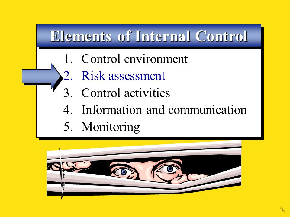 Elements of Internal Control