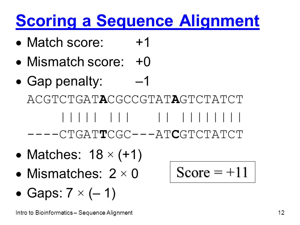Scoring a Sequence Alignment