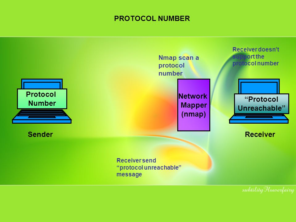 Network Mapper (nmap) Protocol Number Protocol Unreachable