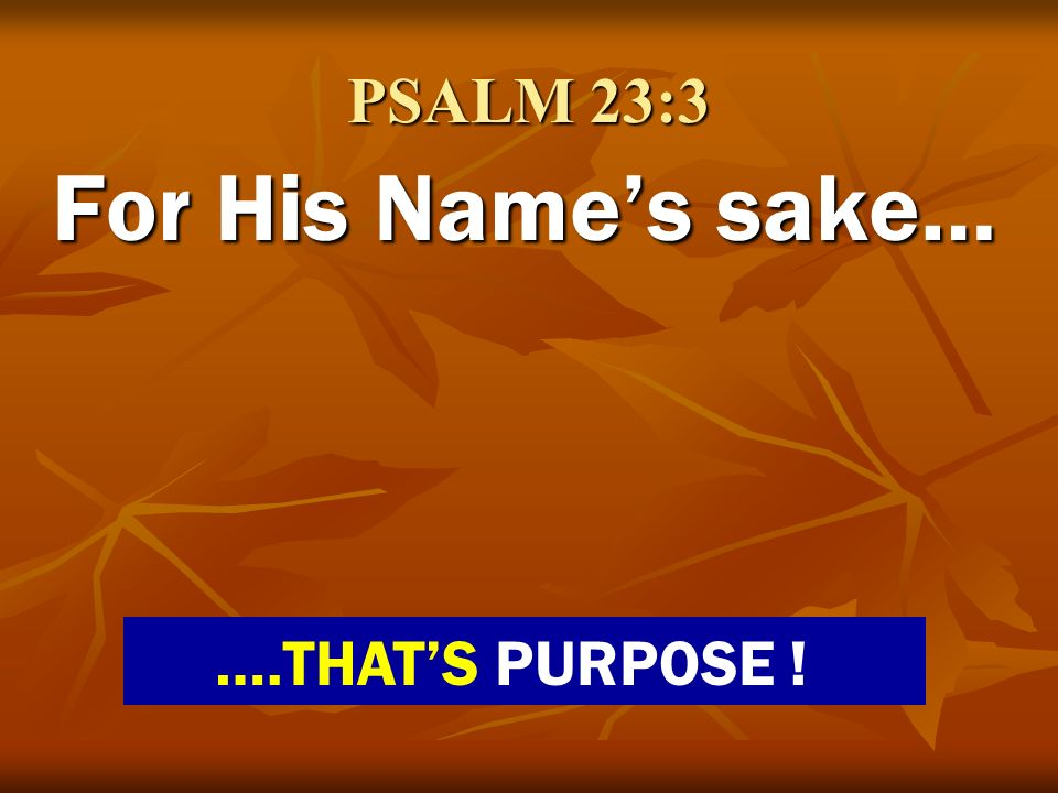 PSALM 23:3 For His Name's sake… ….THAT'S PURPOSE !