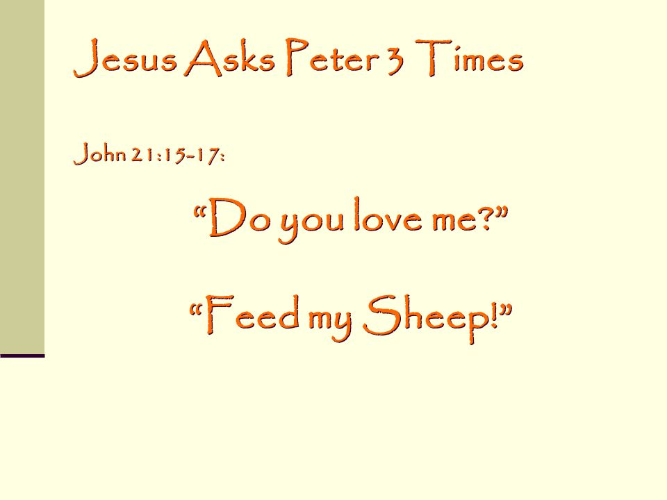 Do you love me Feed my Sheep!