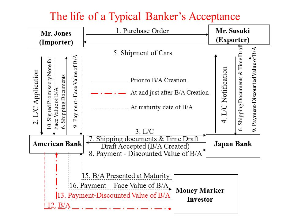 The life of a Typical Banker's Acceptance