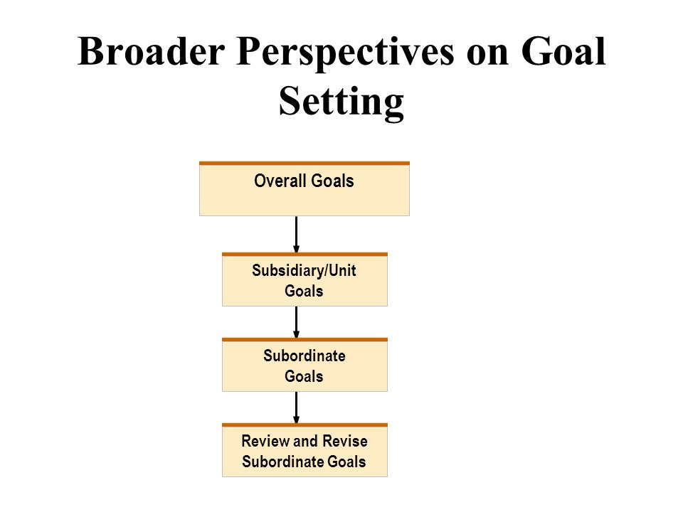 Broader Perspectives on Goal Setting