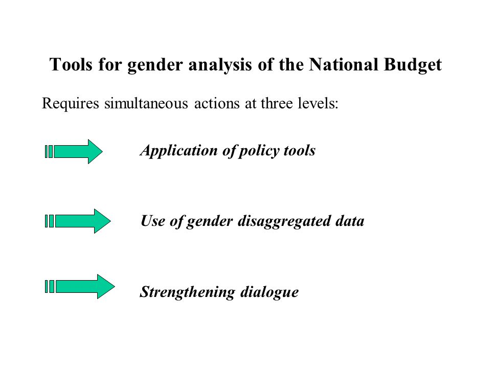 Tools for gender analysis of the National Budget
