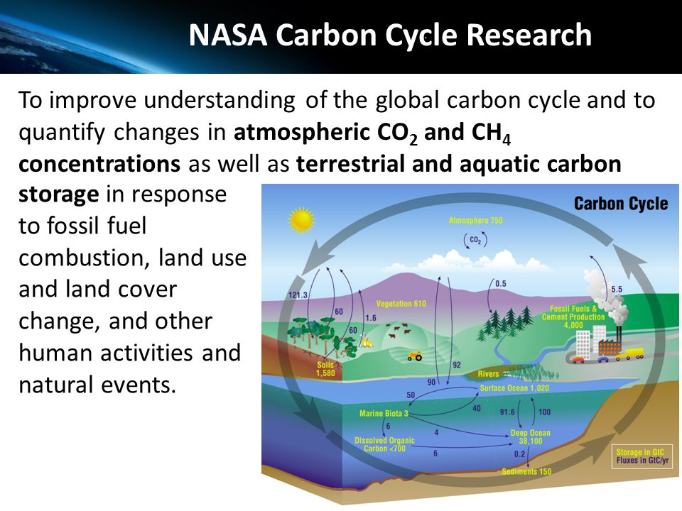 Carbon cycle ecosystems focus area earth science division ppt nasa carbon cycle research ccuart Choice Image