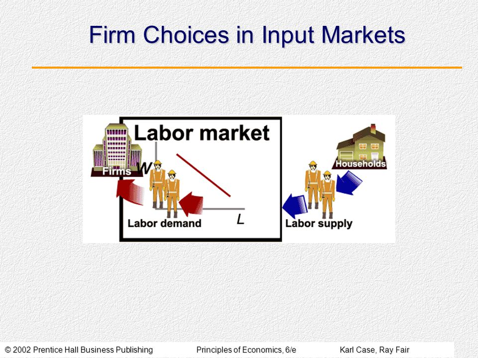 Firm Choices in Input Markets