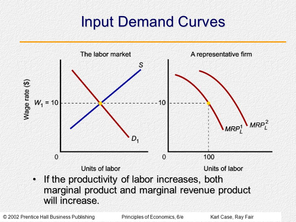 Input Demand Curves If the productivity of labor increases, both marginal product and marginal revenue product will increase.