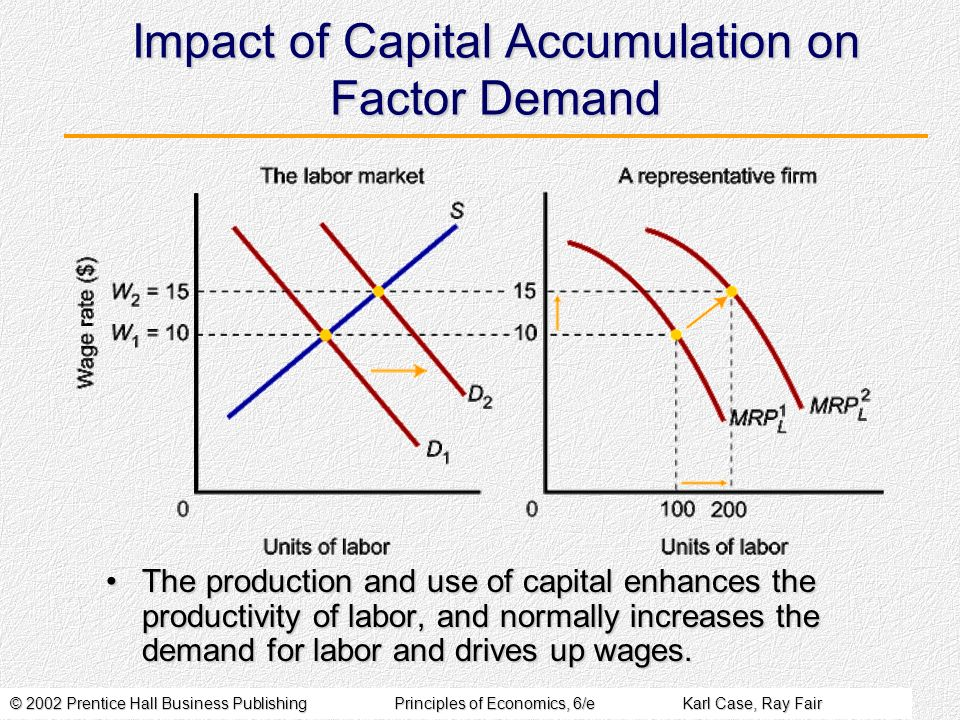 Impact of Capital Accumulation on Factor Demand