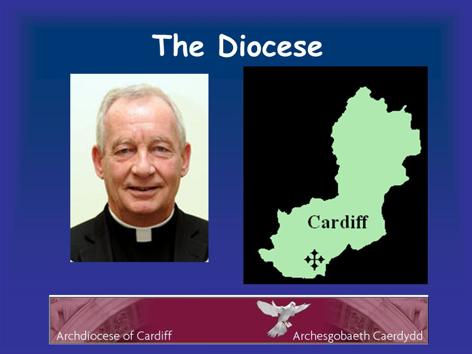 The Diocese The particular church a technical term meaning the people of one diocese under its bishop.