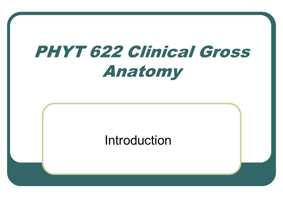 PHYT 622 Clinical Gross Anatomy - ppt download