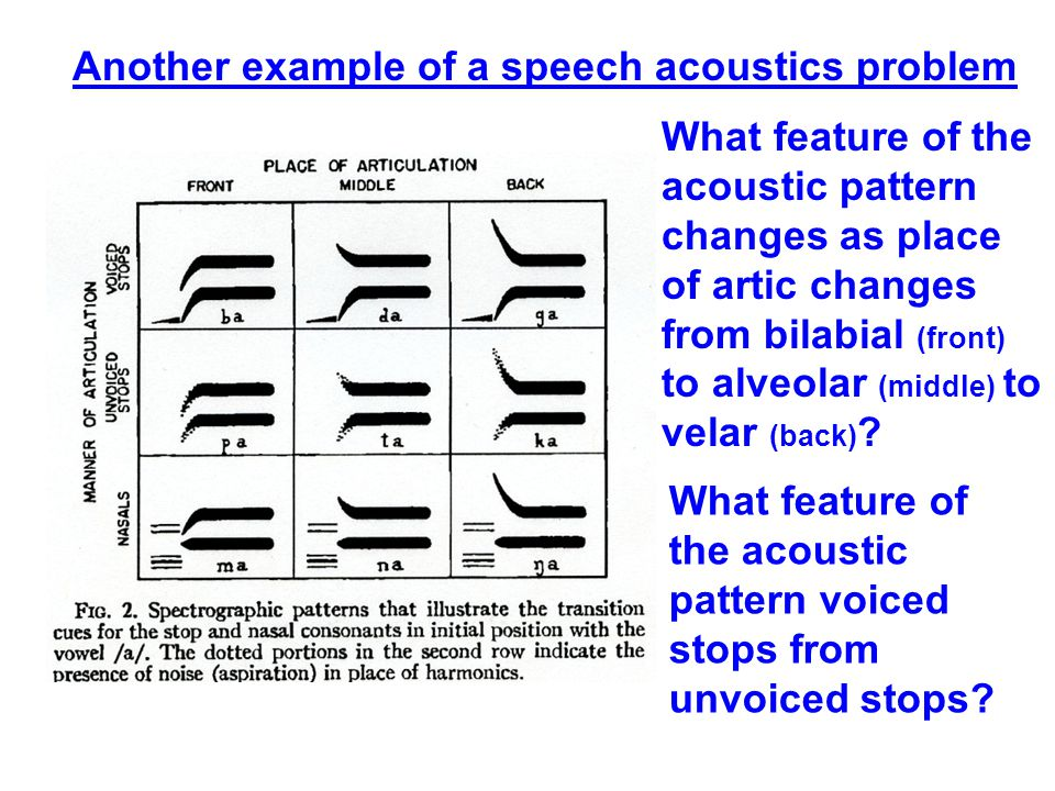 Another example of a speech acoustics problem