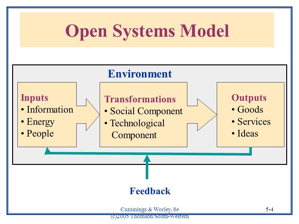 open system model of an organization