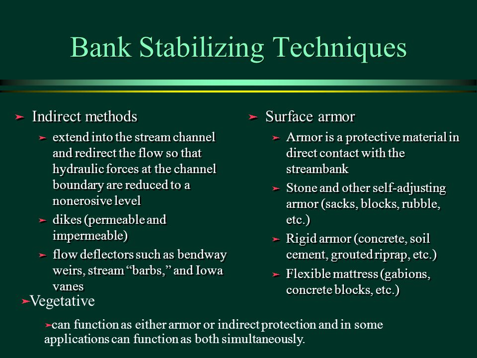 Bank Stabilizing Techniques