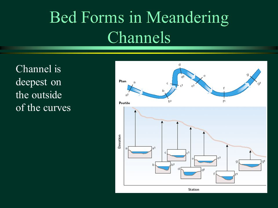 Bed Forms in Meandering Channels