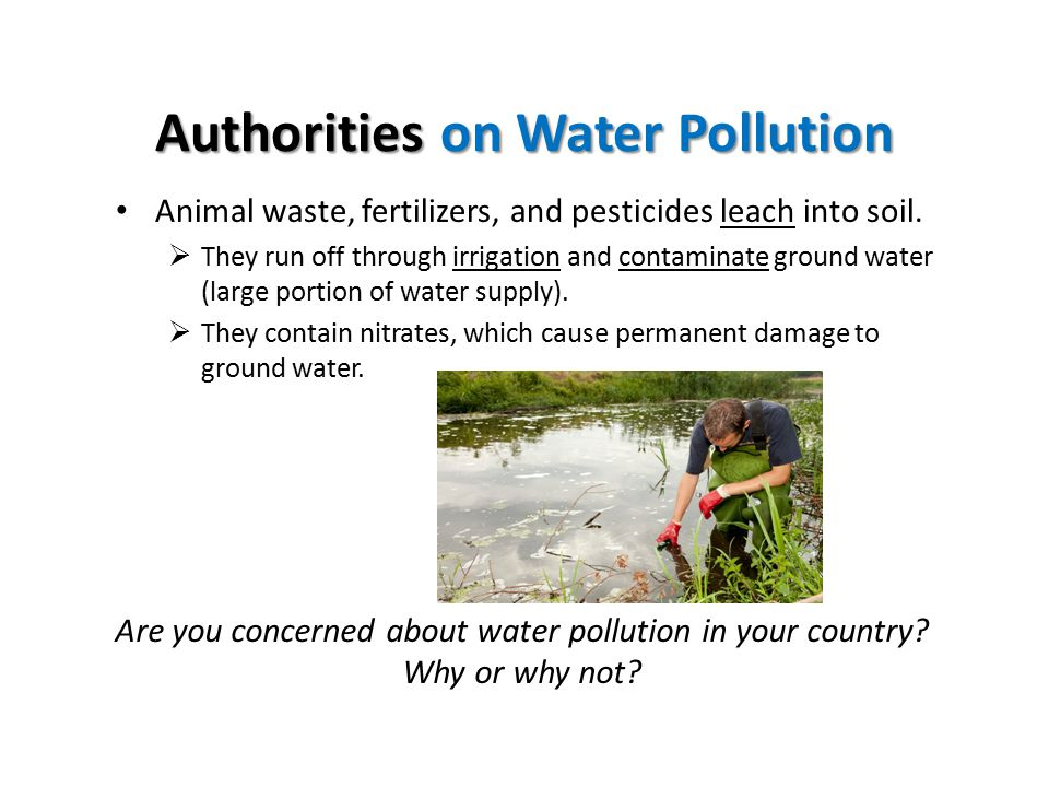 Authorities on Water Pollution