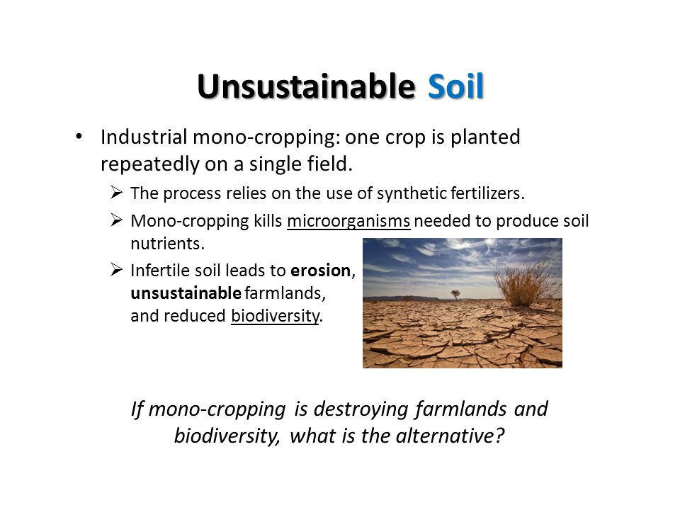 Unsustainable Soil Industrial mono-cropping: one crop is planted repeatedly on a single field.