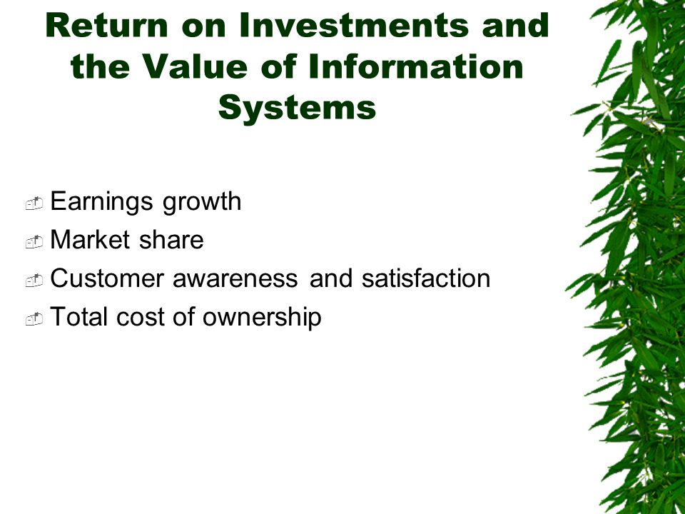 Return on Investments and the Value of Information Systems