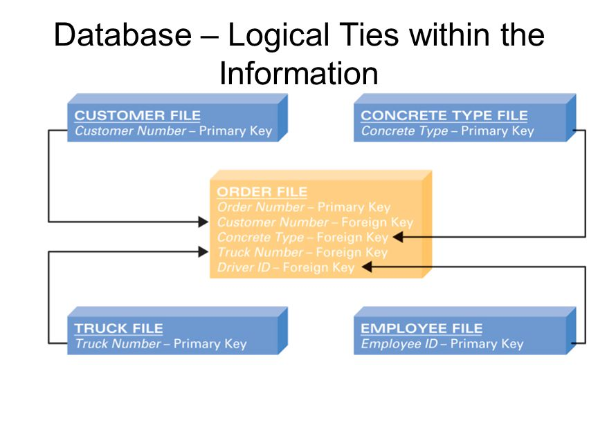 Database – Logical Ties within the Information