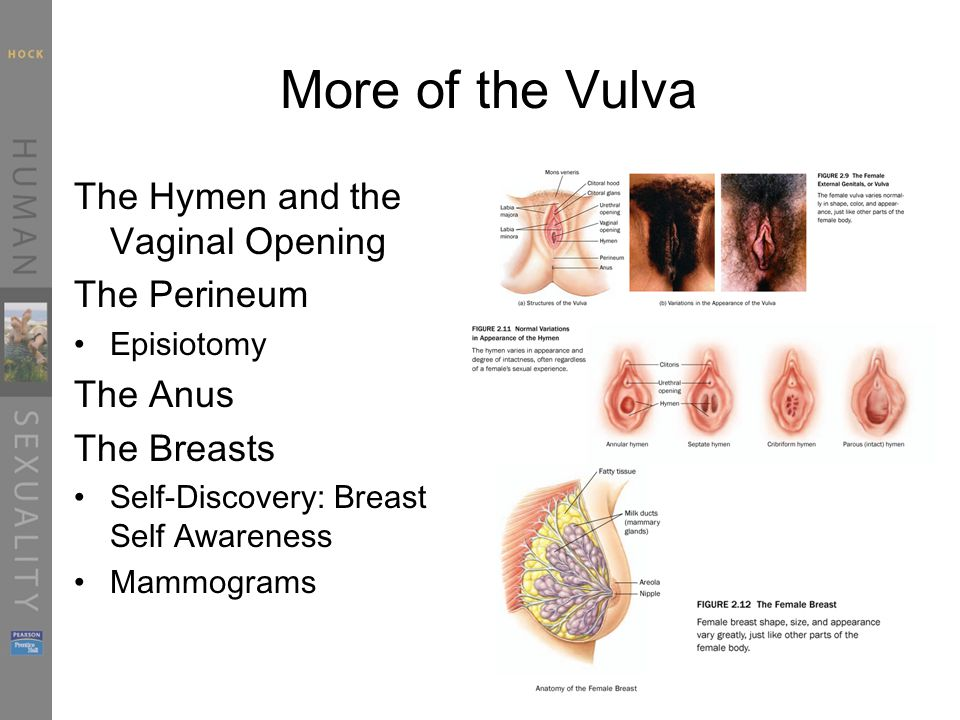 size vaginal opening An average