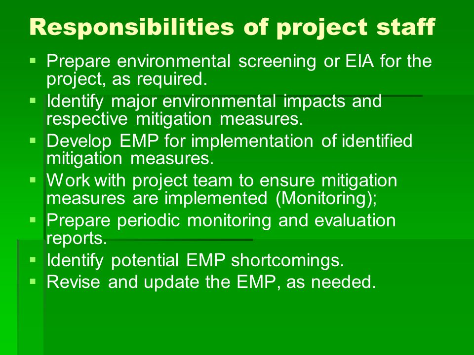 Responsibilities of project staff