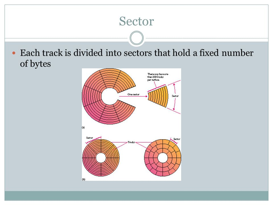 Sector Each track is divided into sectors that hold a fixed number of bytes