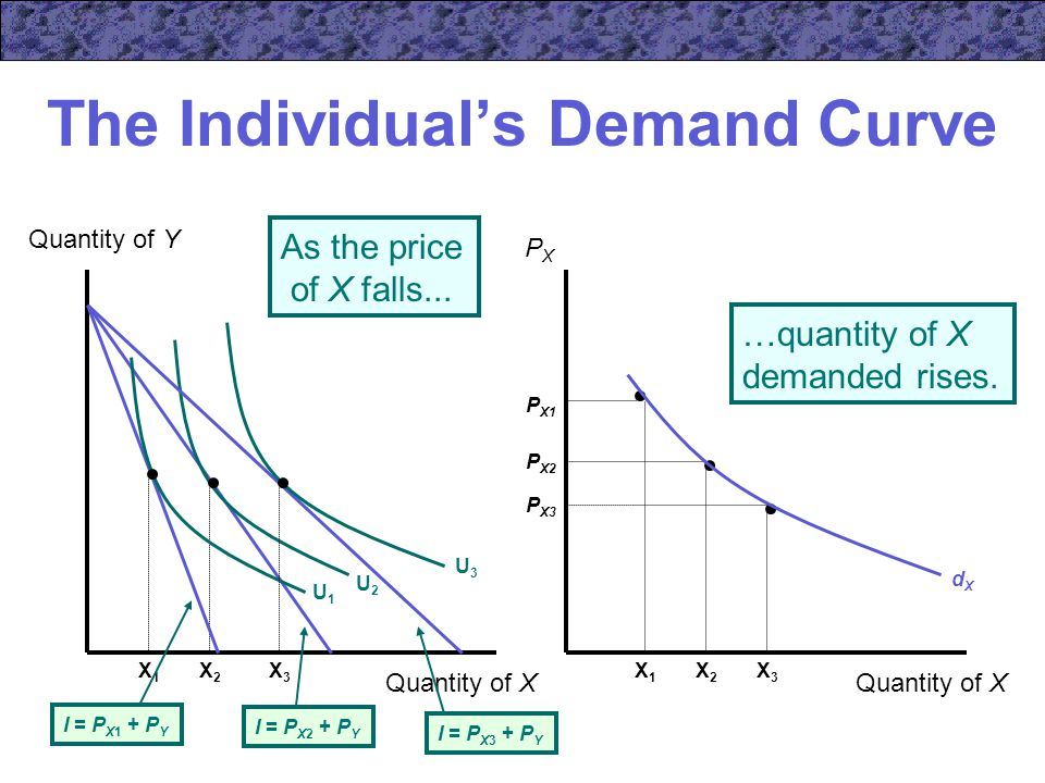 The Individual's Demand Curve