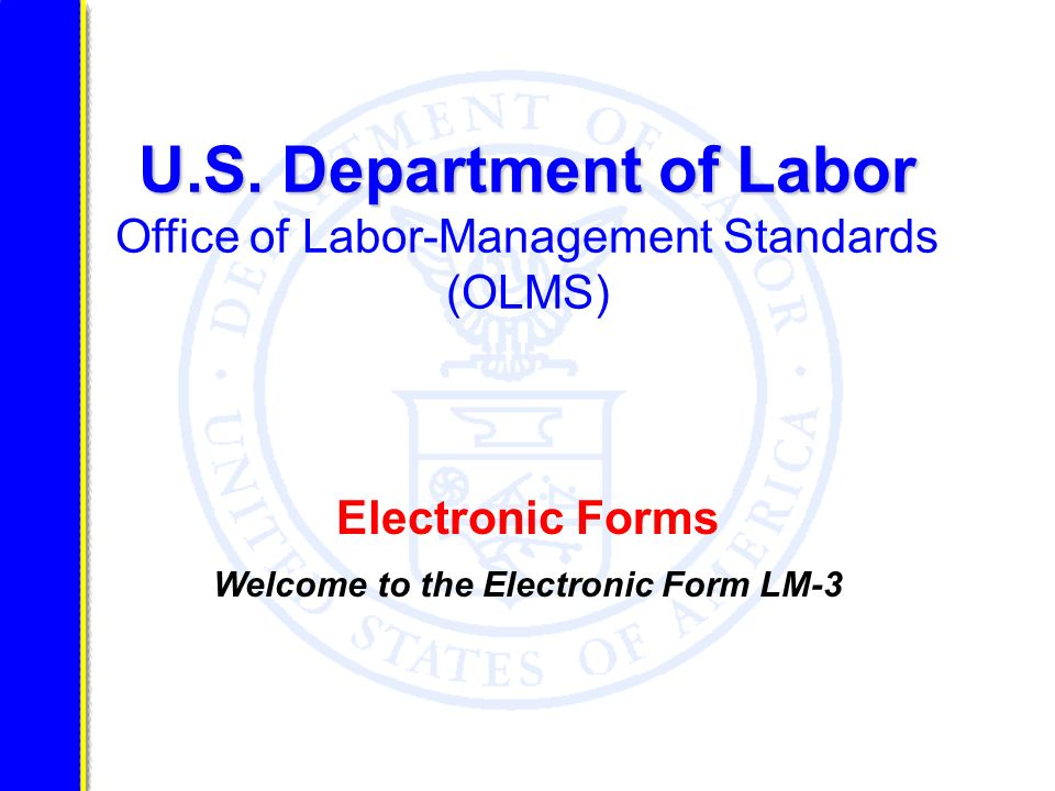 Welcome to the Electronic Form LM-3