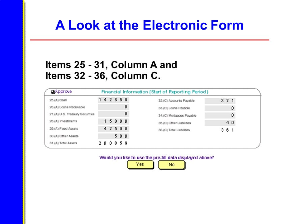 A Look at the Electronic Form