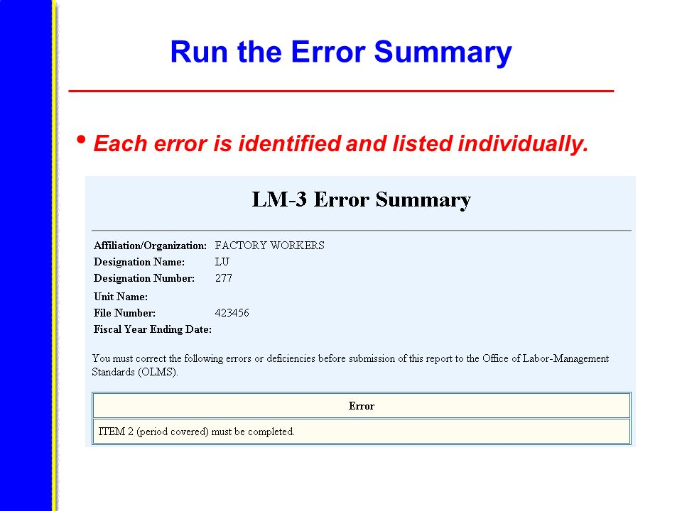 Run the Error Summary Each error is identified and listed individually. The Error Summary on this slide states Item 2 was not completed.
