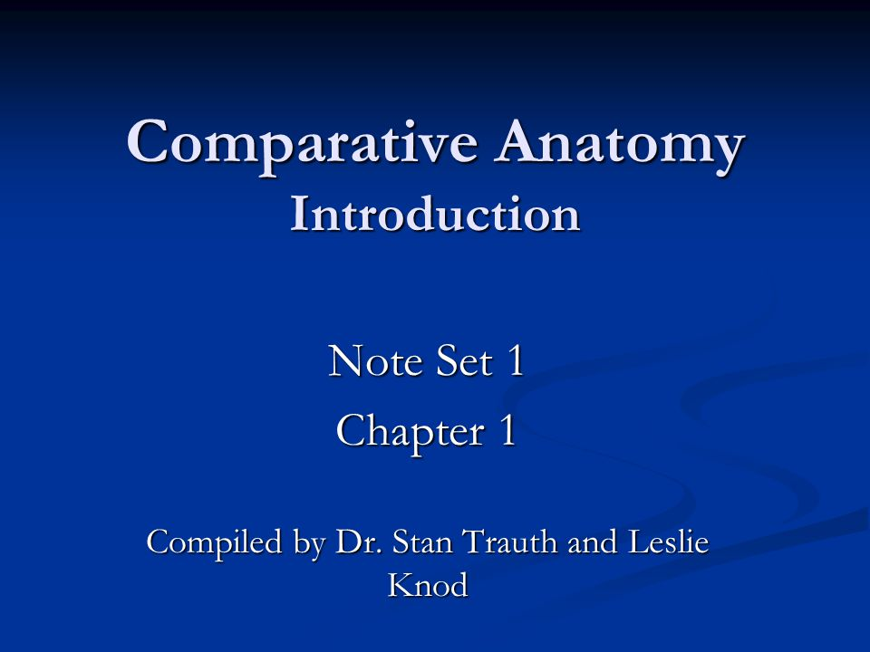 Comparative Anatomy Introduction - ppt download