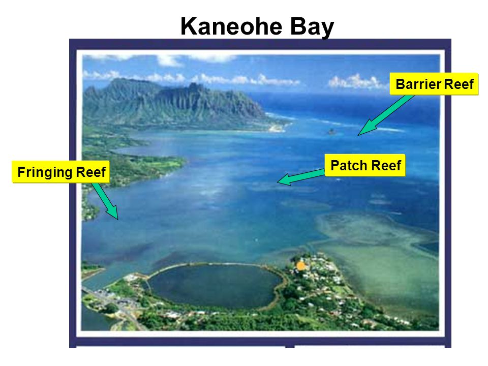 Hawaiian Island Geology Ppt Video Online Download