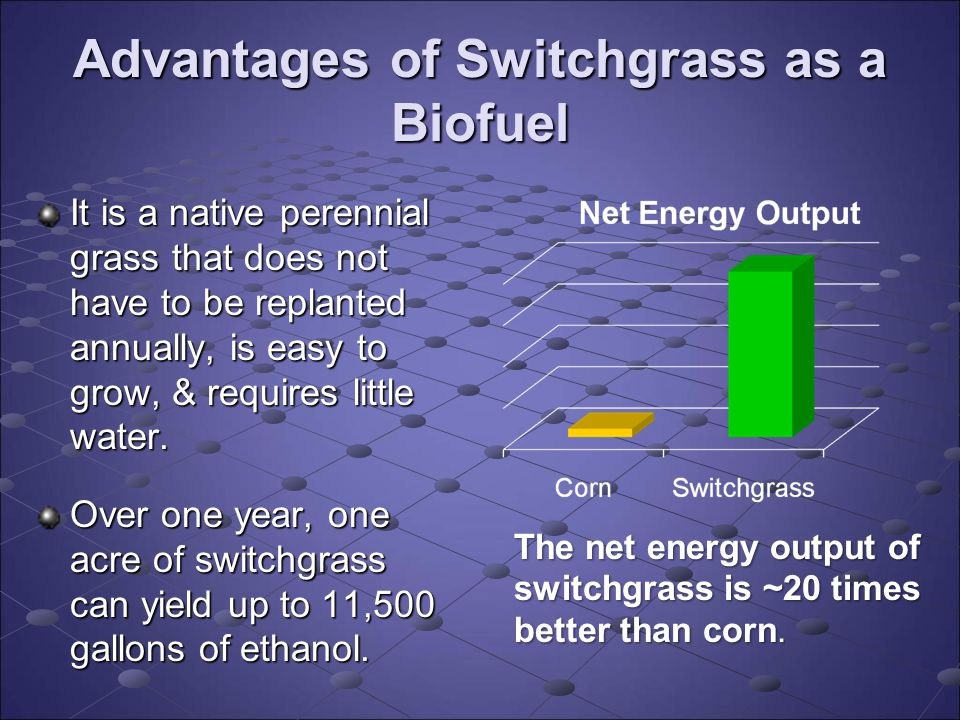 Advantages of Switchgrass as a Biofuel