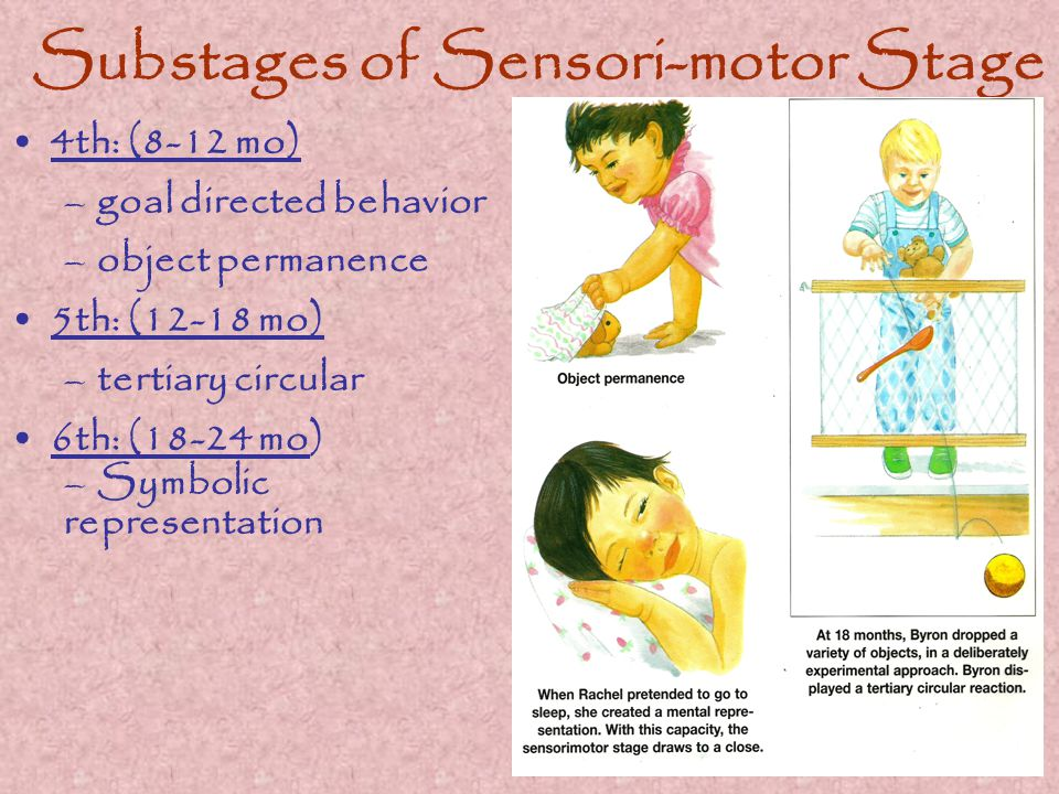 Substages of Sensori-motor Stage