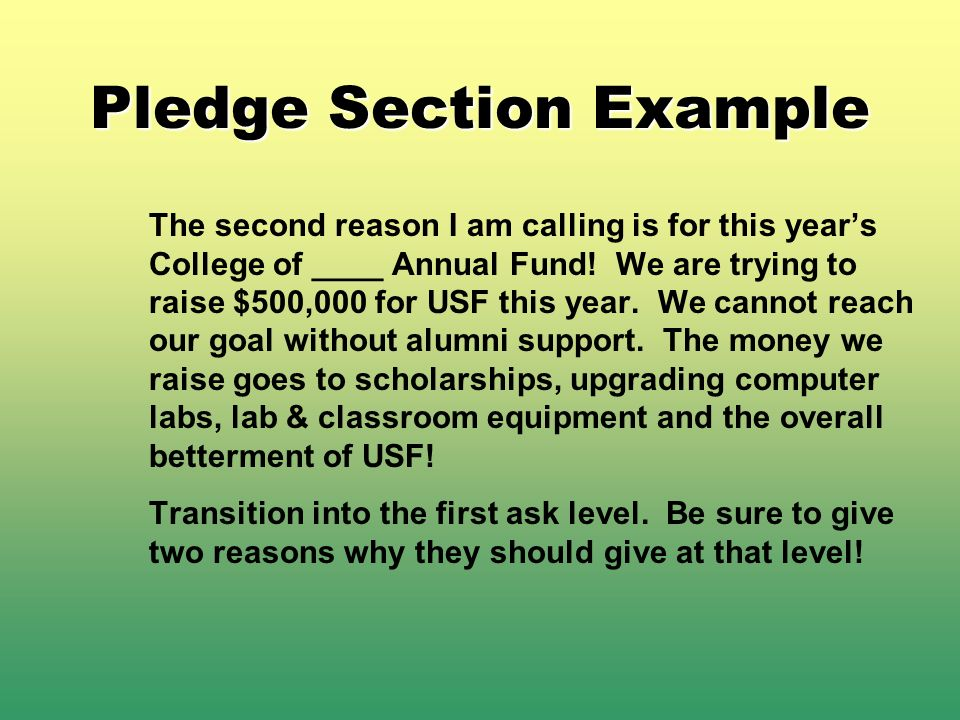 Pledge Section Example